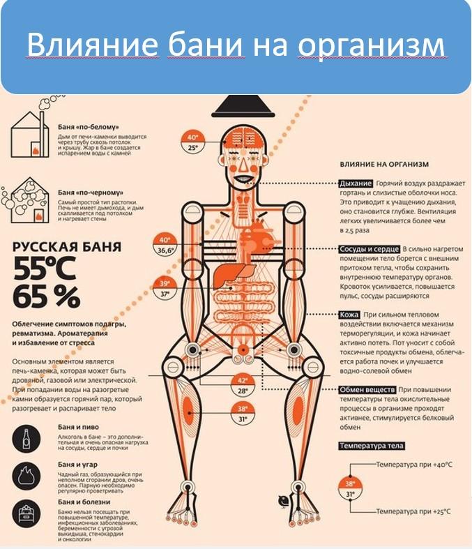 Влияние бани на организм