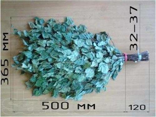 оптимальный размер веника березового для бани
